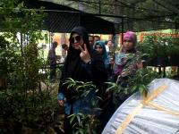 Teori Telapak Kaki JadikanHutan Angker Itu Kini Jadi Kebun Raya Jompie
